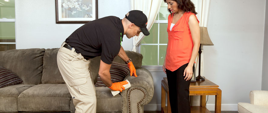 Menomonee Falls, WI carpet upholstery cleaning